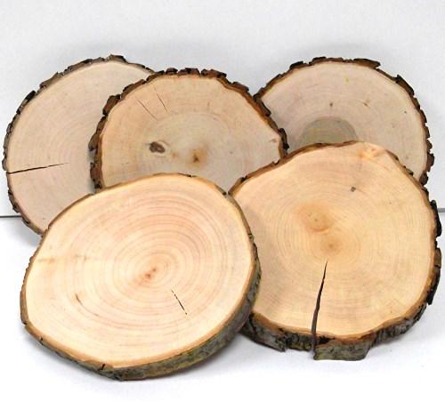 Baumscheibe Erle rund 17-20 cm - 2. Wahl Rindenscheibe natur geschliffen