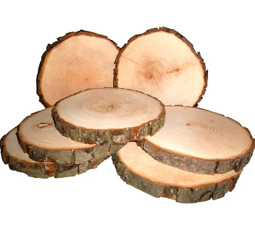 Baumscheibe Erle rund 15-17 cm - Holzscheiben mit Rinde